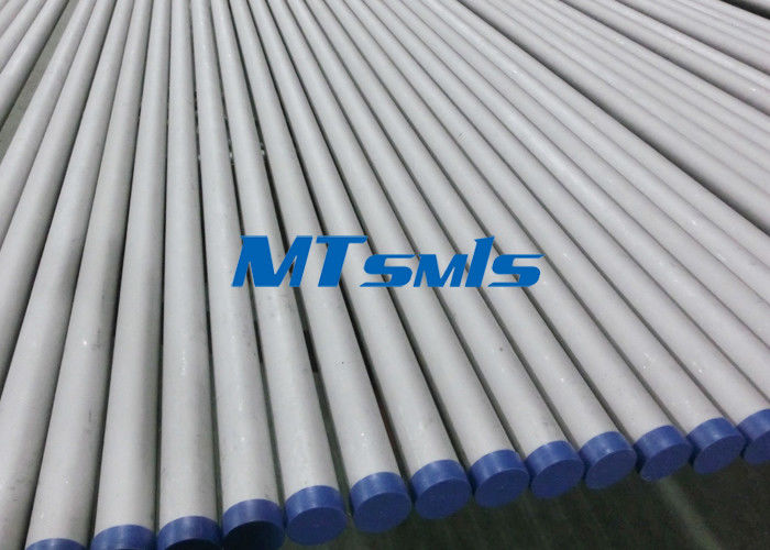 12 Inch Sch40 TP347 / 347H Austenitic Stainless Steel Seamless Pipe Plain End Cut pemasok
